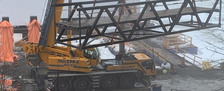 Dulepka-Cranes-03
