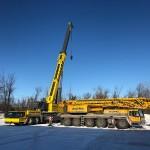 Dulepka-Cranes-08